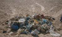 All kinds of litter were collected, leaving behind a clean beach