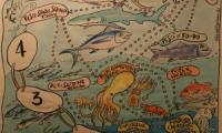 A gay ecosystem poster was part of the education trail animated by artisanal fishermen
