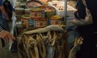 Stockfish (made from cod, Gadus morhua) from Norway on sale at Slow Fish 2011